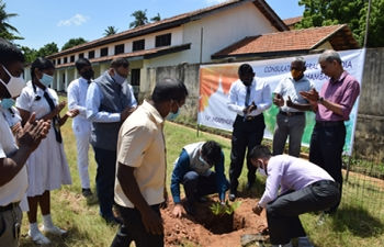 Tree Plantation at St Mary's National College, Hambantota.
